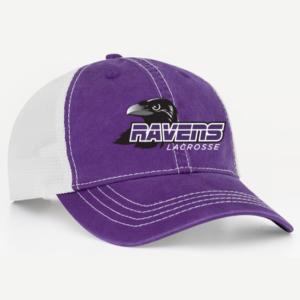 rl_v47_purple